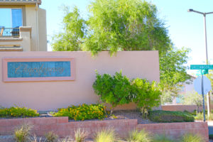 Chardonnay Ridge Homes for sale in the Arbors Summerlin