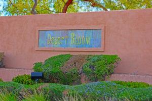 desert bloom Homes for sale in the Arbors Summerlin